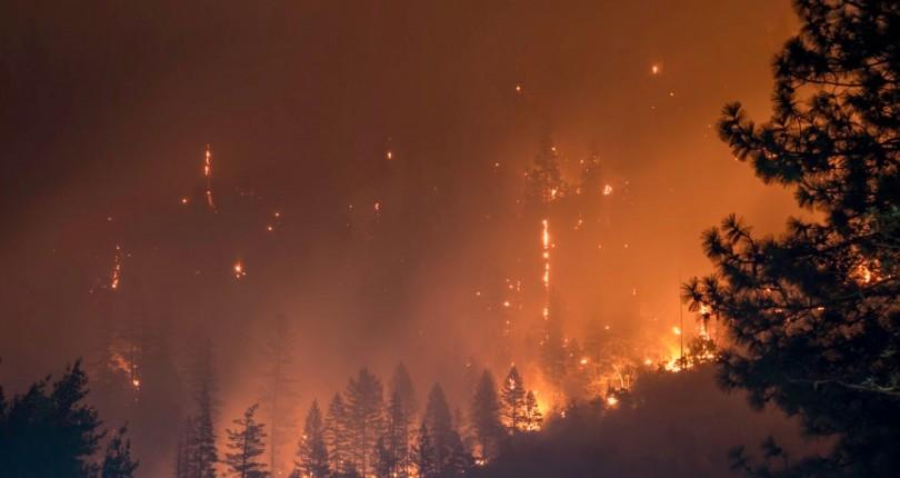 Recalificación: ¿origen de los incendios?